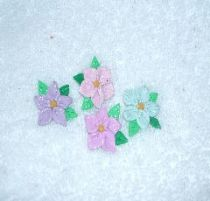 Pastel Flower  pierced Earrings
