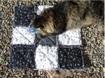 Catnip Kitty Quilt--Black and White Paws