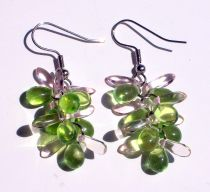Strawberries and Limes Earrings