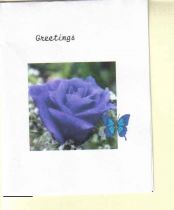 one set of 10 rose greeting cards